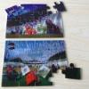 3d lenticular puzzles