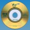3' Mini CD-R