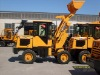 LG910 pay loader (mini payloader) expert