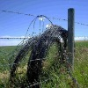 Barbed Wire Fence (IOWA Type)
