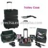 Professional Cosmetic Trolley luggage ,nylon cosmetic case,wheeled suitcase 302-2