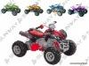 Baby ATV