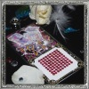 2010 SDK Fashion rhinestone sticker