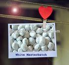 Plastic Tio2 White Masterbatch for Plastics/White Master Batch/Manufacturer