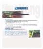 Drip irrigation belts