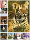 Wholesale Any size any designs animal skins laptop sticker