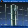 PVC coated (Width:0.5-2.5m) holland metal mesh (manufactory)