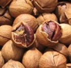 Chinese walnut