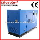Natural Gas Generator 10-1000kW