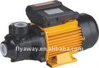 220V/110V GPM series vortex water pump