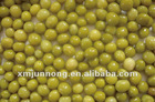 Canned Green Peas (Canned Green Beans) 400G/850G/2840G
