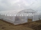 walk-in greenhouse