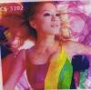 CS3302 model Sublimation Silk Flag Fabric
