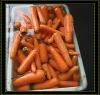 Frozen Red Carrot