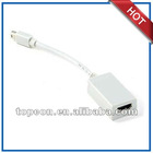 mini displayport adapter for ipad