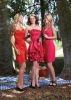 Custom-made Short Affordable Bridesmaid Dresses (ABG242)