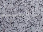 Silver Oyster granite slab