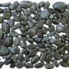 Hot Black Beach Pebble Tile