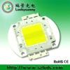 30W LED module