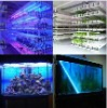 LED light/plant grow lightingWaterproof rigid
