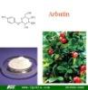 Arbutin (CAS No.:497-76-7)