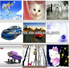 Wholesale Skins,OEM Cute laptop skin sticker