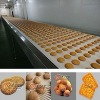 YX full automatic food processing machinery in China