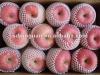2012fruit market prices red fuji apple