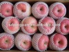2012fruit market prices red fuji apple