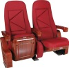 auditorium chair / VIP seats, chairs for stadium YL-009