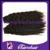 High quality natural wave 100% brazilian virgin hair accept paypal