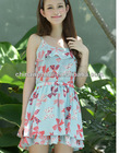 women sleeveless printed chiffon dress