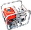 SS30PG water pump