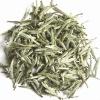 bai hao yin zhen (silver needle) tea