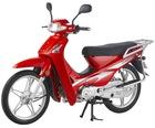 cub bike JK110
