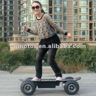 800W Electric Skateboard