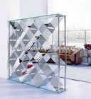2012# modern metal wine cabinet