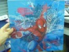 Spider-man changing effect 3d picture / poster advertising
