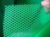 PP Plastic Plain Net