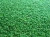 Artificial Grass for Golf Fields