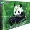 indoor full color 1R1G1B LED screen