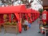 big and small mutipurpose sun shelter