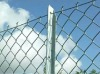 (frontier) security chain link fence (factory on sale)
