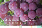 2.1*2.1 cat eye pattern 3D Cold Laminating Film