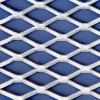 expanded plate mesh(stainless steel wire)