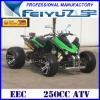 250CC EEC ATV