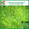 IQF Frozen Organic Romano Bean Cut For Sale