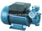 DB125 Vortex Water Pump