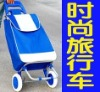 shopping bag cart