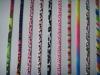 colourful shoeslace